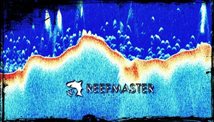 ReefMaster – Vorstellung