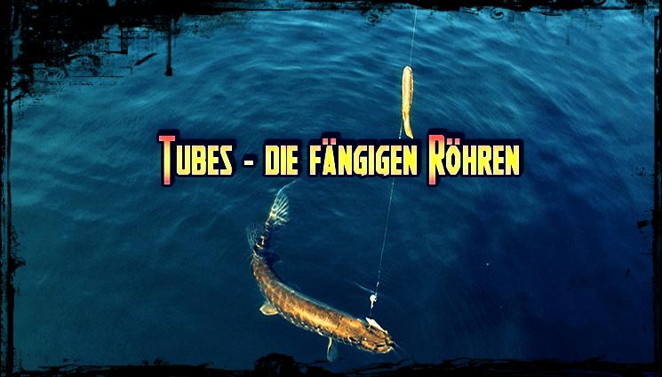 Gastartikel: Tubes – die fängigen Röhren