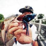 Thai Street Fishing