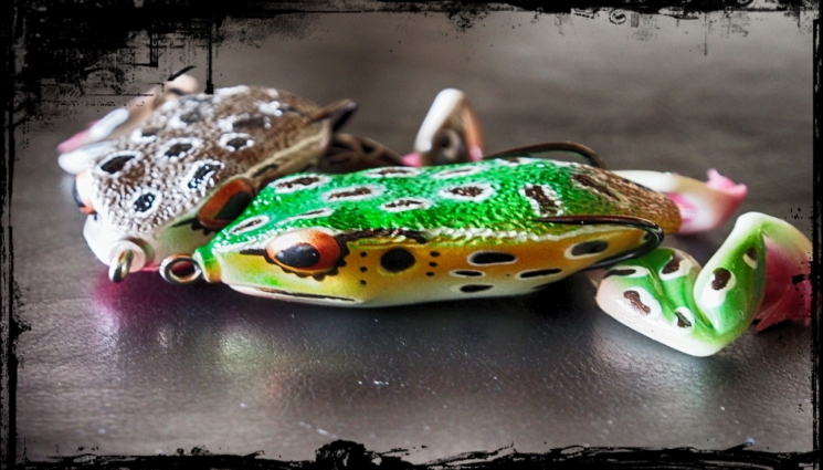 Der Molix Frog – Quak oder Quark?